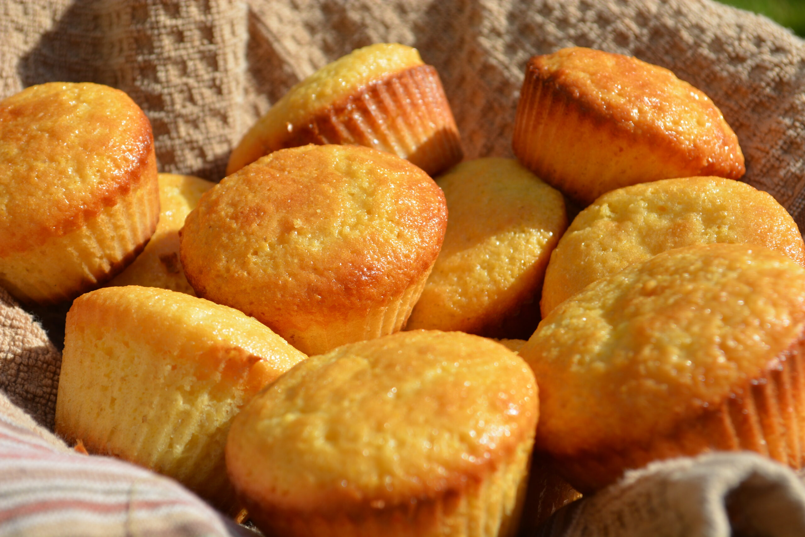 Honey Cornbread Muffins | The Cookin Chicks