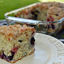 Cinnamon Streusel Blueberry Cake