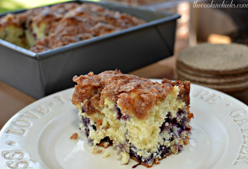 blueberry cake topped with cinnamon streusel perfect for breakfast, brunch, or anytime