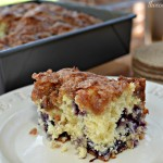 moist, flavorful cake with blueberries throughout and a cinnamon crumb topping