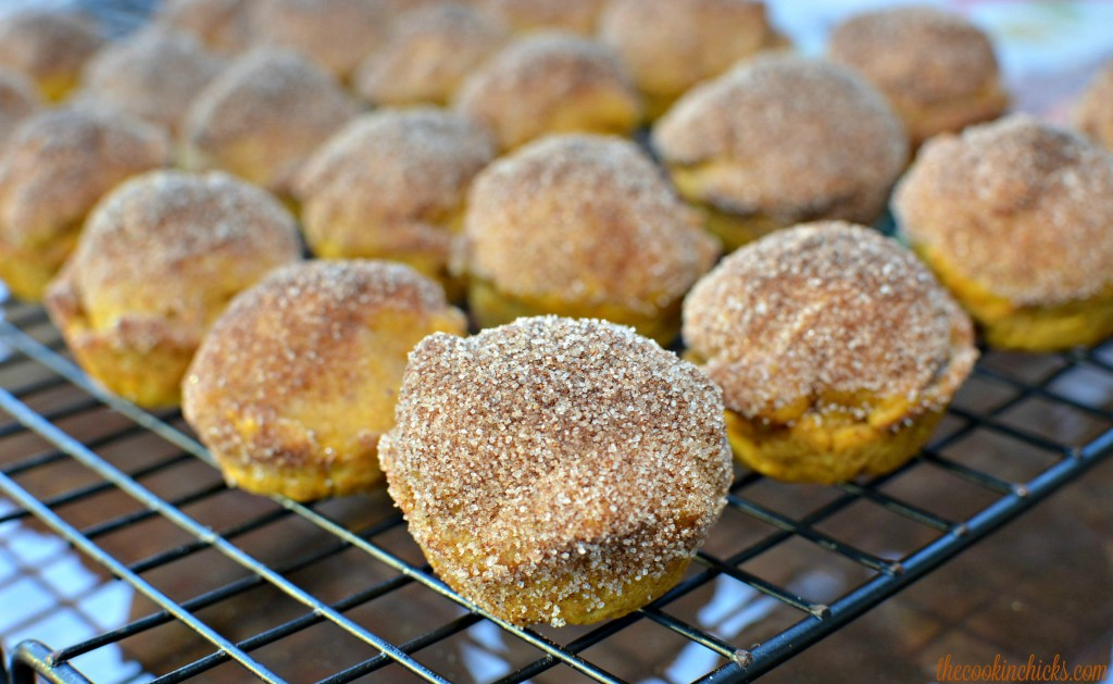 Mini Pumpkin muffins with a cinnamon sugar topping