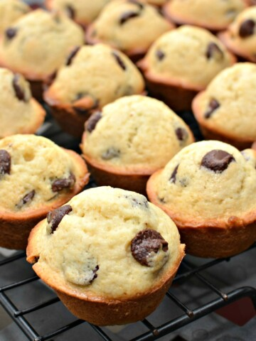 mini chocolate chip muffins packed with just the right amount of chocolate chips
