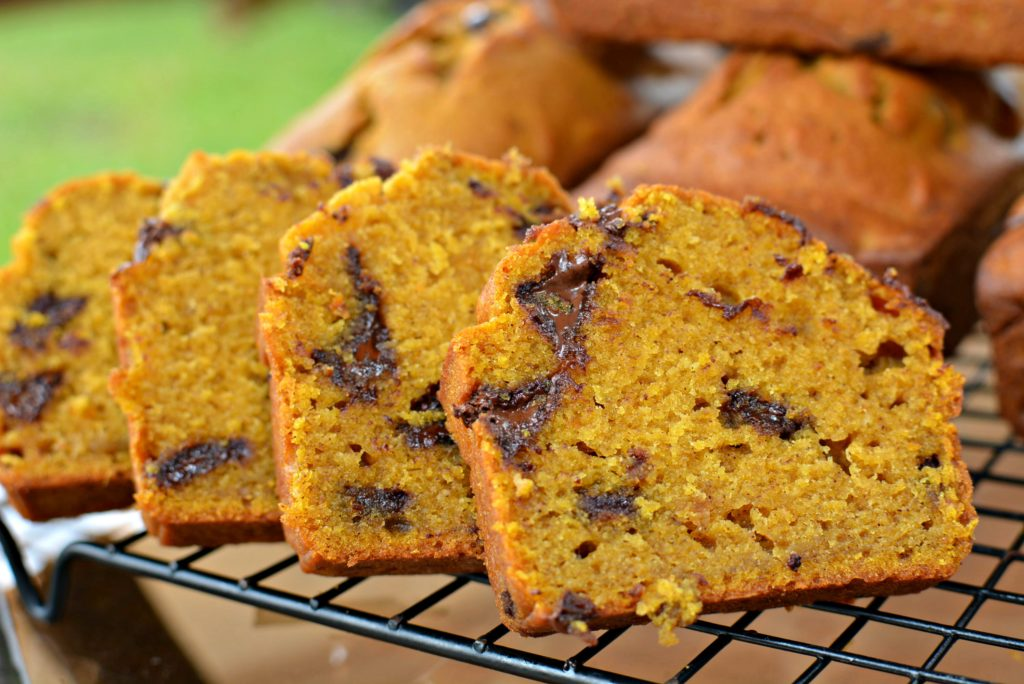 Super moist, soft and loaded with chocolate chips! The perfect breakfast or dessert for Fall!