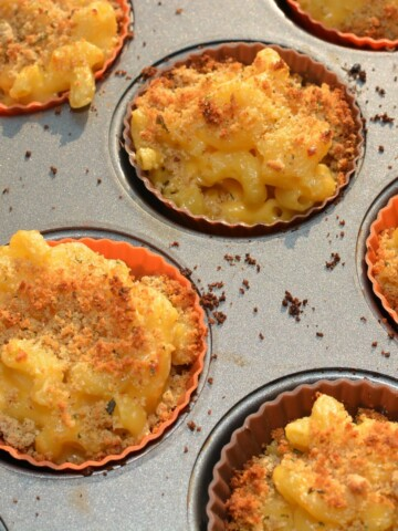 tender pasta with a coated cheese sauce, put into bite sized muffin cups